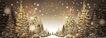 Christmastreesoutside