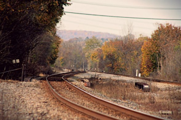 Flo_Autumn_AutumnTracks