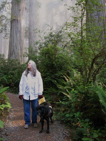 Blog15_DHill_Redwoods_Donna-&-Hunter-on-path-Glowing-Mist_by_Rich_Hill